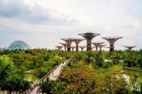 Đà Nẵng, điểm du lịch đáng đến năm 2015